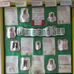 Year 4's Community Display.